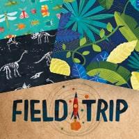 american-crafts-field-trip.jpg