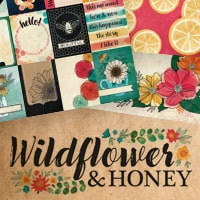 american-crafts-wildflower-honey.jpg