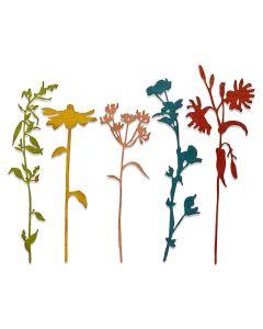 Wildflower Stems #3 Thinlits Dies - Tim Holtz - Sizzix