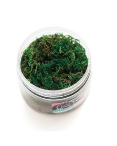 Color Pour Resin Moss - American Crafts