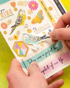 Color Study Stickers - American Crafts
