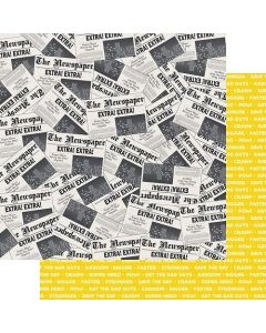 "Headline News 12"" x 12"" Paper - Sidekick Optional - Amber Labau - Fancy Pants Designs"