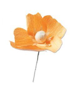 California Poppy Thinlits Die - Let It Bloom - Lisa Jones - Sizzix