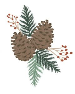 Pine Branches Layered Clear Stamps - Lisa Jones - Sizzix