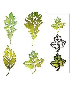 Leaf Print Thinlits Dies - Tim Holtz - Sizzix*
