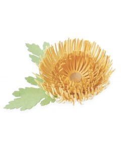 Chrysanthemum Thinlits Dies - Kath Breen - Sizzix