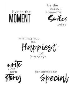 Sunnyside Sentiments #2 Clear Stamps Set - Sizzix*