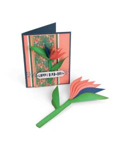 Sizzix Birds of Paradise Lynda Kanase die set