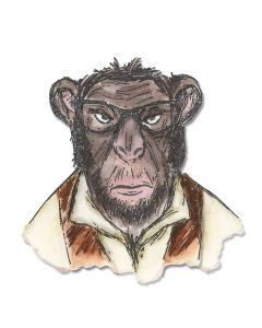 Hipster Chimp by Tim Hotlz